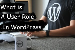 What is a User Role in Wordpress